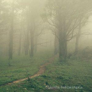 Knuckles Srilanka