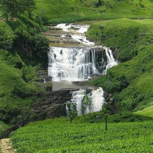 OUR 10 NIGHT/11 DAY TOUR PACKAGE SRI LANKA