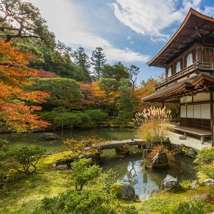 SAKURA TOUR PACKAGE – Japan